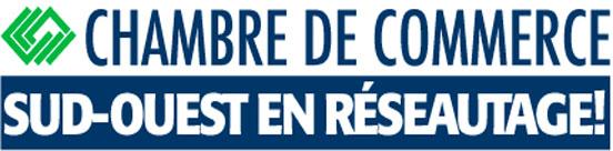 CCISOM-en-reseautage web